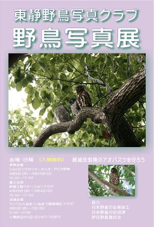 Posterpostcard
